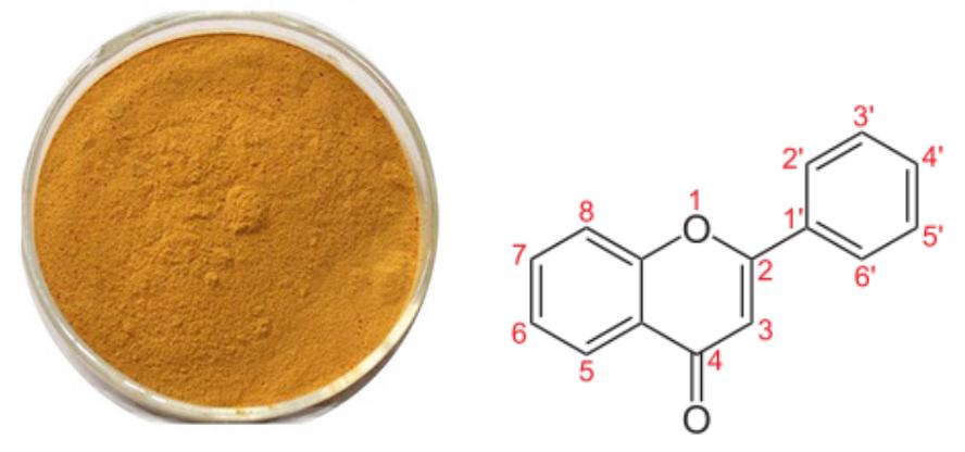 Dandelion root extract11