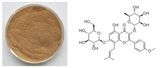 Epimedium Extract2111122